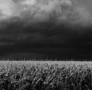 field-storm-brewing